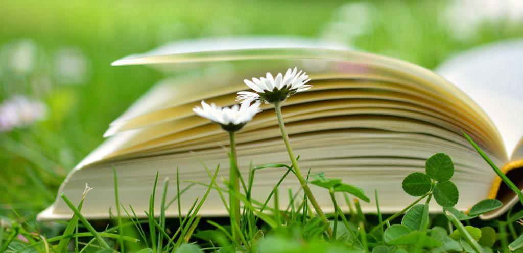 book 2304389